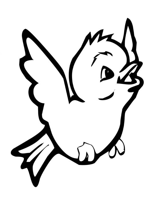 Regenworm Kleurplaat Quot Птицы Quot раскраски для детей