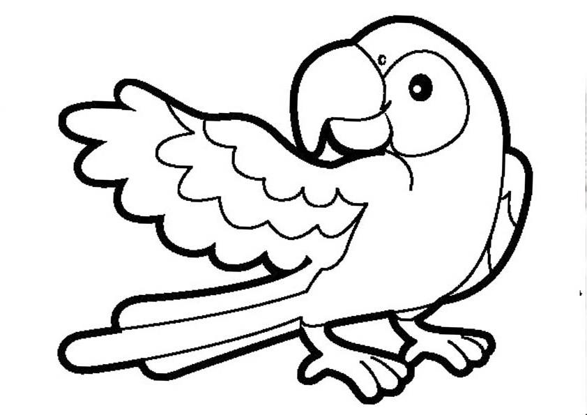 Раскраска про птица