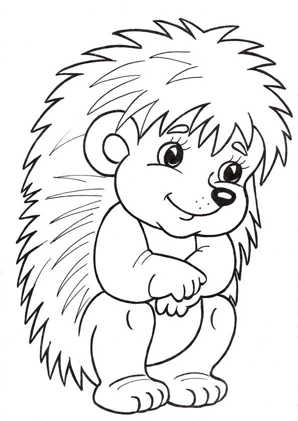 Раскраска Ежик для детей